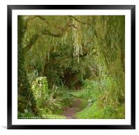 Secret pathway to where, Framed Mounted Print