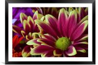 Floral Bouquet, Framed Mounted Print
