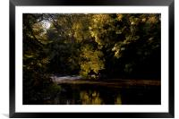 Autumn Sunshine and Shadow, Framed Mounted Print