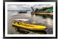 Yellow Tour Boat, Framed Mounted Print