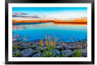 West Harbour, Framed Mounted Print