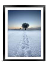 Tracks in the snow, Framed Mounted Print