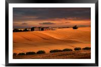 last light over the wheat fields, Framed Mounted Print