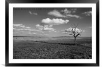 Tollesbury Marshes, Framed Mounted Print