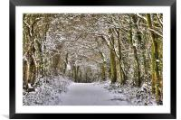 Winter in Essex, Framed Mounted Print
