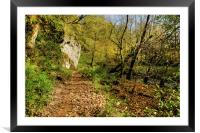 Woodland Path to Janets Foss, Framed Mounted Print