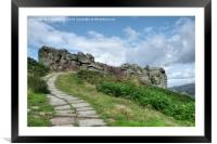 The Cow and Calf Ilkley , Framed Mounted Print