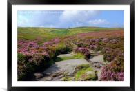 Haworth Moor Footpath to Top Withens, Framed Mounted Print