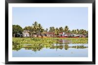 Kerala fishing boats moored and surrounded trapped, Framed Mounted Print
