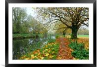ITCHEN NAVIGATION IN AUTUMN                   , Framed Mounted Print