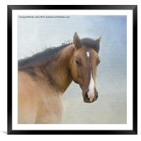 I Walk in Beauty, Framed Mounted Print