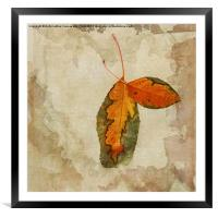 A Touch of Autumn #2, Framed Mounted Print