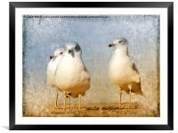 Hanging Out, Framed Mounted Print