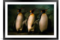 Trio, Framed Mounted Print