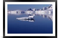 Icebergs in Antarctica 4, Framed Mounted Print
