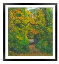 fall shot with alittle color.... , Framed Mounted Print