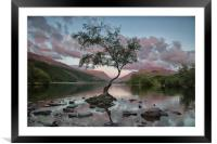 Ever So Lonely, Framed Mounted Print
