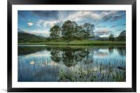 Perfect reflections, Framed Mounted Print