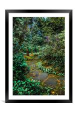 Woodland Walk in Rosshall Park ,Paisley, Framed Mounted Print