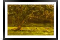 Pastoral Scene with Sheep, Framed Mounted Print