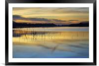 Near the night, Framed Mounted Print