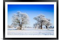 Catton Park, Old Catton, Framed Mounted Print