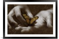The Butterfly Effect, Framed Mounted Print