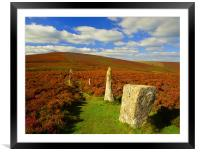 Challacombe Stone Rows, Framed Mounted Print