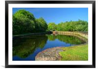 Canal Reflections, Framed Mounted Print