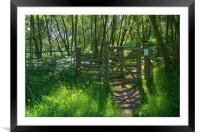 Wharncliffe Woods, Sheffield, South Yorkshire, Framed Mounted Print
