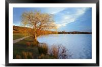 Rother Valley Country Park, Framed Mounted Print