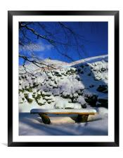 Ringing Roger and Bench in the Snow, Framed Mounted Print