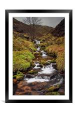 Looking up Blackden Clough , Framed Mounted Print