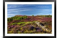 Heather on Millstone Edge                         , Framed Mounted Print