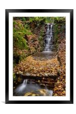 Ninesprings, Yeovil                               , Framed Mounted Print