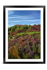 Heather along Millstone Edge                      , Framed Mounted Print