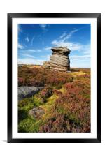 Mother Cap & Heather                     , Framed Mounted Print