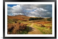 Footpath to Higger Tor                       , Framed Mounted Print