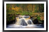 Wyming Brook in Autumn                            , Framed Mounted Print