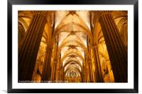 Barcelona Cathedral, Framed Mounted Print