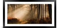 Morning Light, Framed Mounted Print