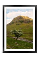Great Gable Mountain, Framed Mounted Print