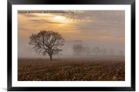 Beeston Castle in the mist  , Framed Mounted Print
