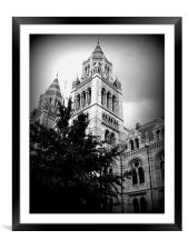 natural history museum, Framed Mounted Print