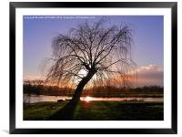 WINTER SUNSET RIVER AVON SALISBURY, Framed Mounted Print
