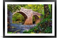 NEW BRIDGE DARTMOOR, Framed Mounted Print