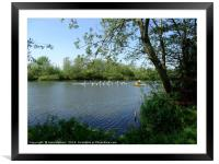 Rowing on the River                            , Framed Mounted Print