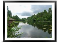 Reflections on the Lake, Framed Mounted Print