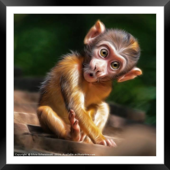 Baby Monkey Framed Mounted Print By Silvio Schoisswohl