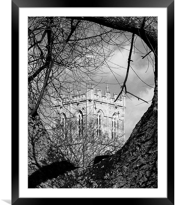 Religious Tree In Black And White Framed Mounted Print By Chris Day